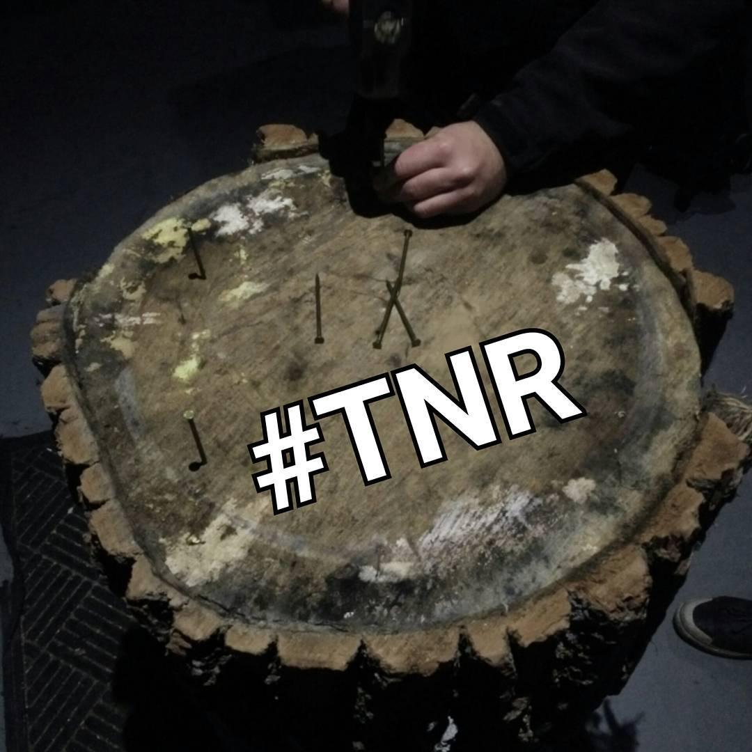 TNR 5/3 - @ltsbrewing 8 pm. No sleep 'til Douglas