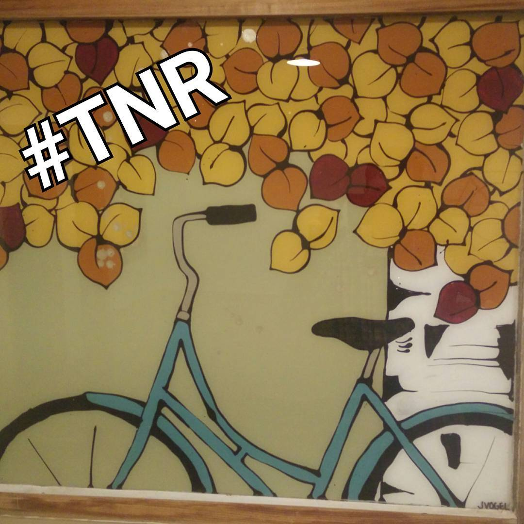 TNR 8/23 - Depart @ltsbrewing at 8:15 pm. Head to Douglas Saloon and Social Club